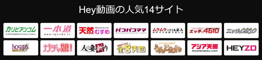 HEY動画(ヘイ動画)単品購入x見放題プラン3